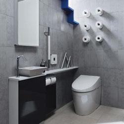 250px_toilet